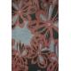 LuLaRoe Amelia (Small) Orange Gray Patterns