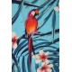 LuLaRoe Randy (2XL) Parrots on Blue