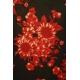 LuLaRoe Randy (Medium) Red Flowers on Black