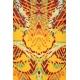 LuLaRoe Randy (XL) orange and red patterns